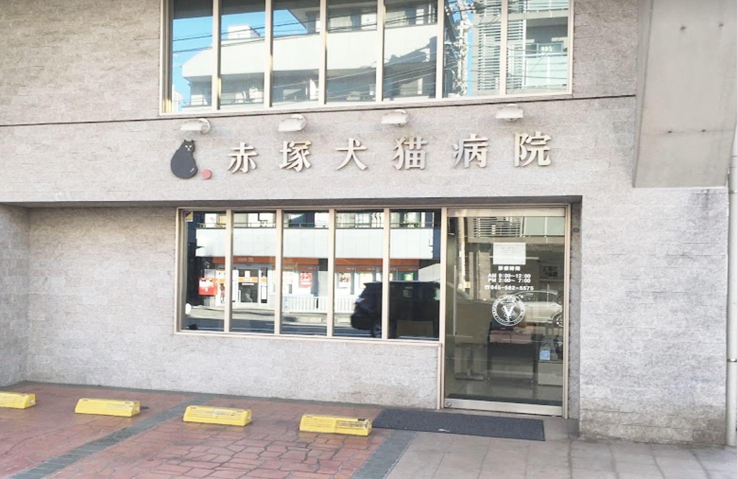 下末吉赤塚犬猫病院